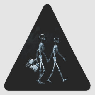 Couple Traveling X-Ray Vision Skeletons - Blue Triangle Sticker