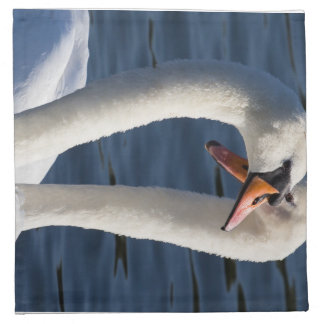 Courting Swans Napkin