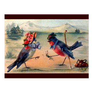Courtship of Birds Postcard