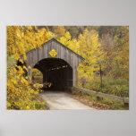 Covered bridge, Vermont, USA 2 Poster