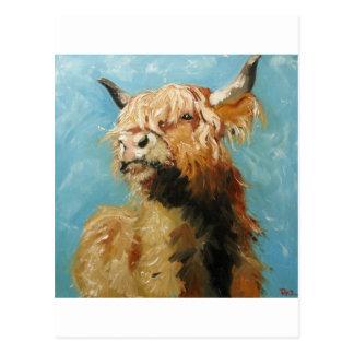 Cow 192 postcard