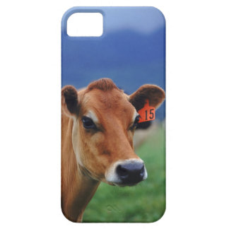 cow 2 iPhone 5 case