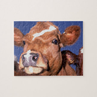 cow 2 jigsaw puzzle