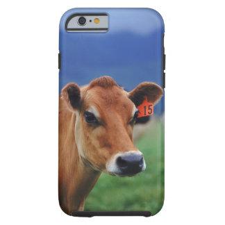 cow 2 tough iPhone 6 case