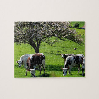 Cow among blooming apple trees in Normandy Jigsaw Puzzle