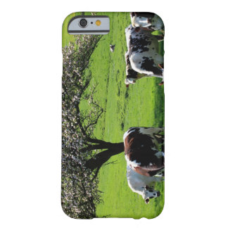 Cow among blooming trees in Normandy Barely There iPhone 6 Case