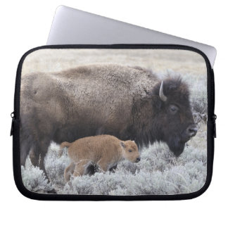 Cow and Calf Bison, Yellowstone 2 Laptop Sleeve
