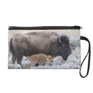 Cow and Calf Bison, Yellowstone 2 Wristlet