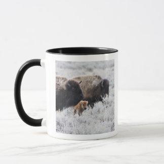 Cow and Calf Bison, Yellowstone Mug