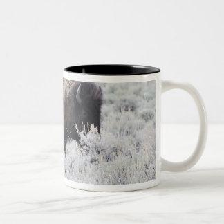 Cow and Calf Bison, Yellowstone Two-Tone Coffee Mug