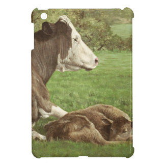 cow and calf in field cover for the iPad mini