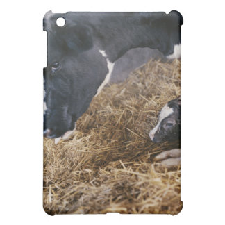 Cow and Calf in Hay iPad Mini Covers