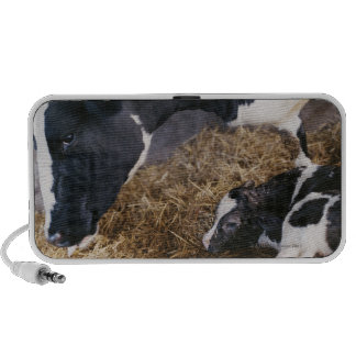 Cow and Calf in Hay Mp3 Speakers