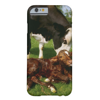Cow and newborn calf barely there iPhone 6 case