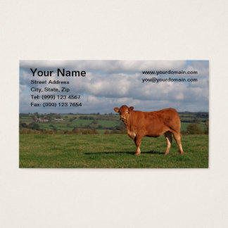 Cow Business Card