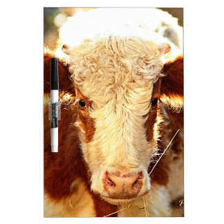 Cow Dry Erase Whiteboards