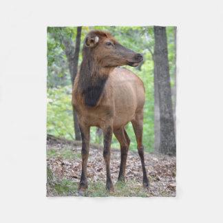 Cow Elk Fleece Blanket
