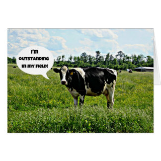 Cow Humor Card