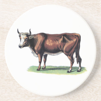 Cow Illustration #1 Coasters