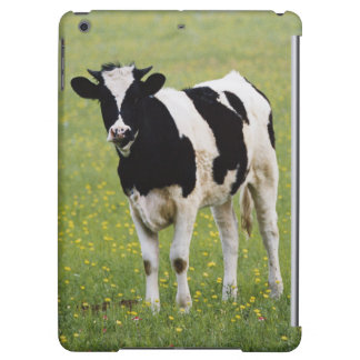 Cow in field of Wildflowers