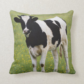 Cow in field of Wildflowers Cushion