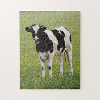 Cow in field of Wildflowers Jigsaw Puzzle