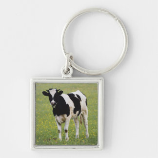 Cow in field of Wildflowers Silver-Colored Square Key Ring
