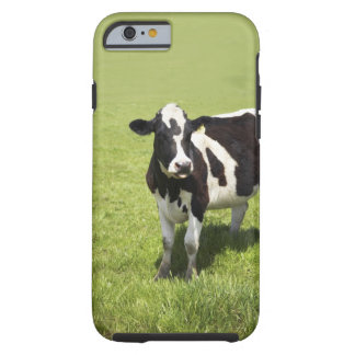 Cow in meadow tough iPhone 6 case