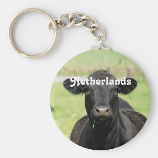 Cow in Netherlands Keychains