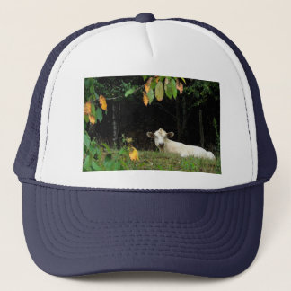 Cow in Pasture Trucker Hat