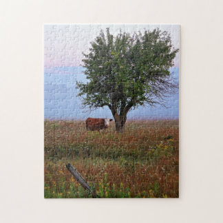 Cow In The Early Morning Light Jigsaw Puzzle