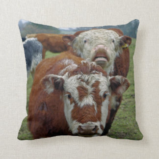 cow in the field cushion