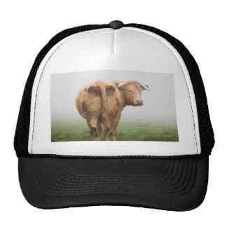cow in the fog cap