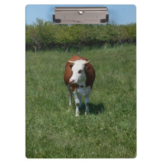 Cow In The Pasture Clipboard