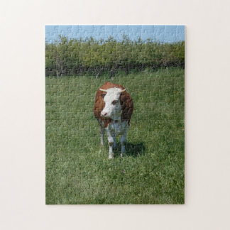 Cow In The Pasture Jigsaw Puzzle