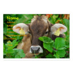 Cow Large Business Cards (Pack Of 100)