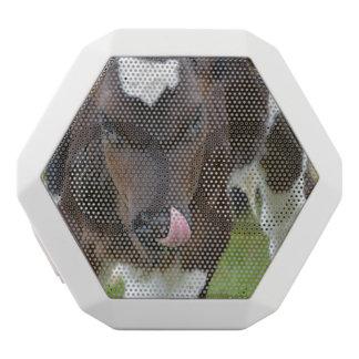 Cow Lick White Boombot Rex Bluetooth Speaker