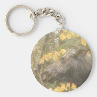 Cow moose in the Maine rain Key Ring