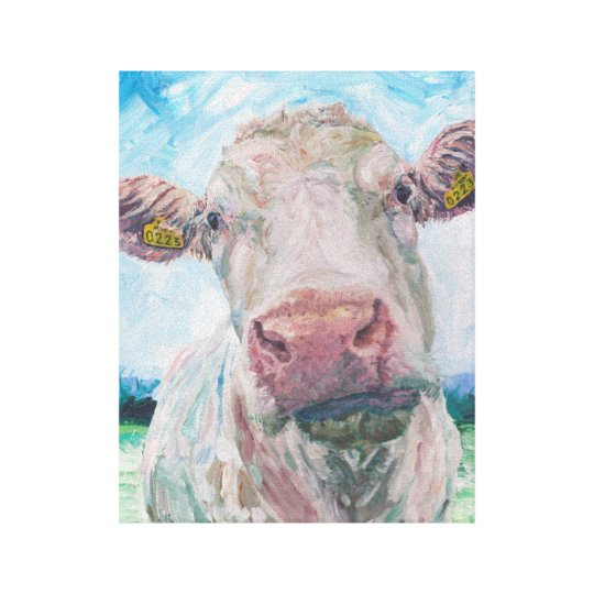 Cow no 04. 0223 Irish Charolais Cow Canvas
