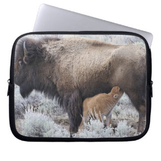 Cow Nursing Bison Calf, Yellowstone 2 Laptop Sleeve