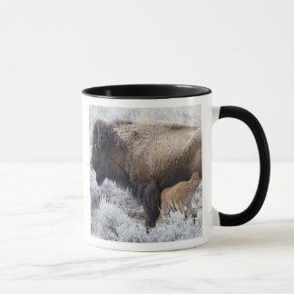 Cow Nursing Bison Calf, Yellowstone 2 Mug