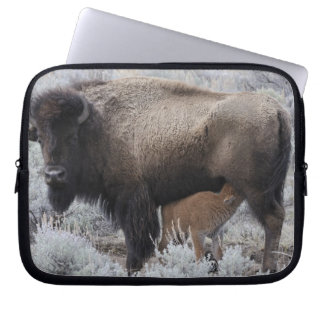 Cow Nursing Bison Calf, Yellowstone Laptop Sleeve