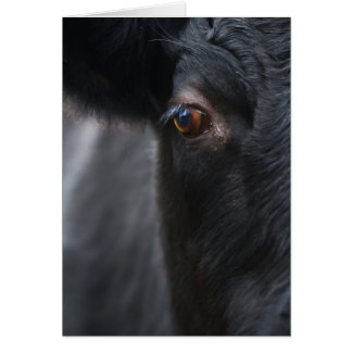 Cow Portrait Greetings Card
