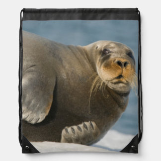 Cow rests on sea ice floating along the coast drawstring bag