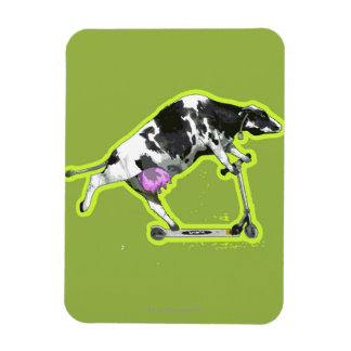 Cow Riding a Scooter Vinyl Magnet