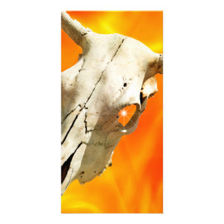 Cow skull and fire customized photo card