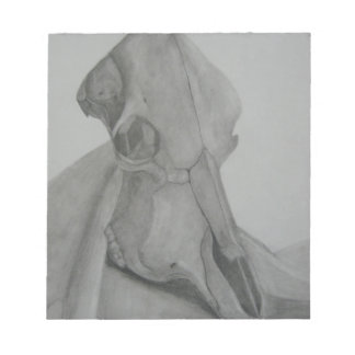 Cow skull pencil drawing note pad