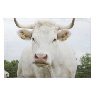 Cow standing in grassy field placemat