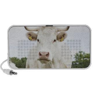 Cow standing in grassy field portable speaker