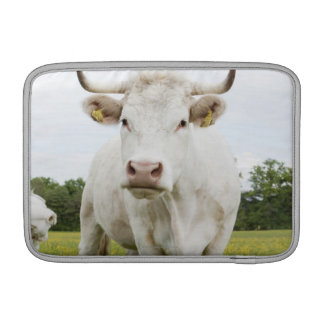 Cow standing in grassy field sleeve for MacBook air